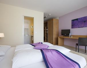 Double room, shower or bath, toilet, balcony