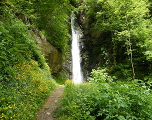 A Hike to the Finsterbach Waterfalls